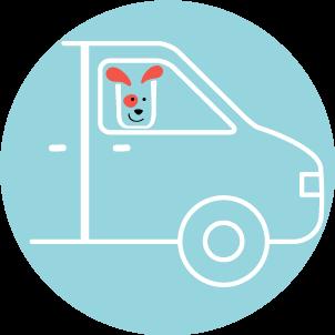 Transportation included at dog daycare